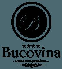 Pensiunea Bucovina Campulung