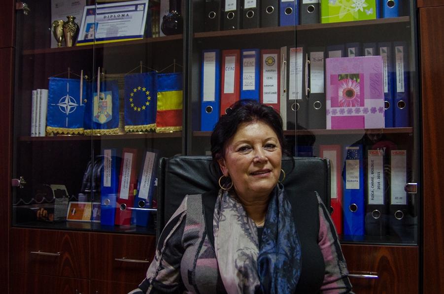Director Școală Gimnazială