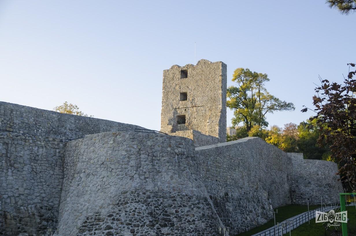 Cetatea Medievala a Severinului