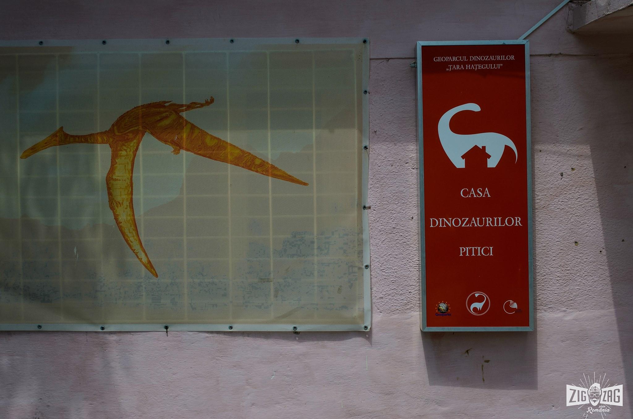 casa dinozaurilor pitici