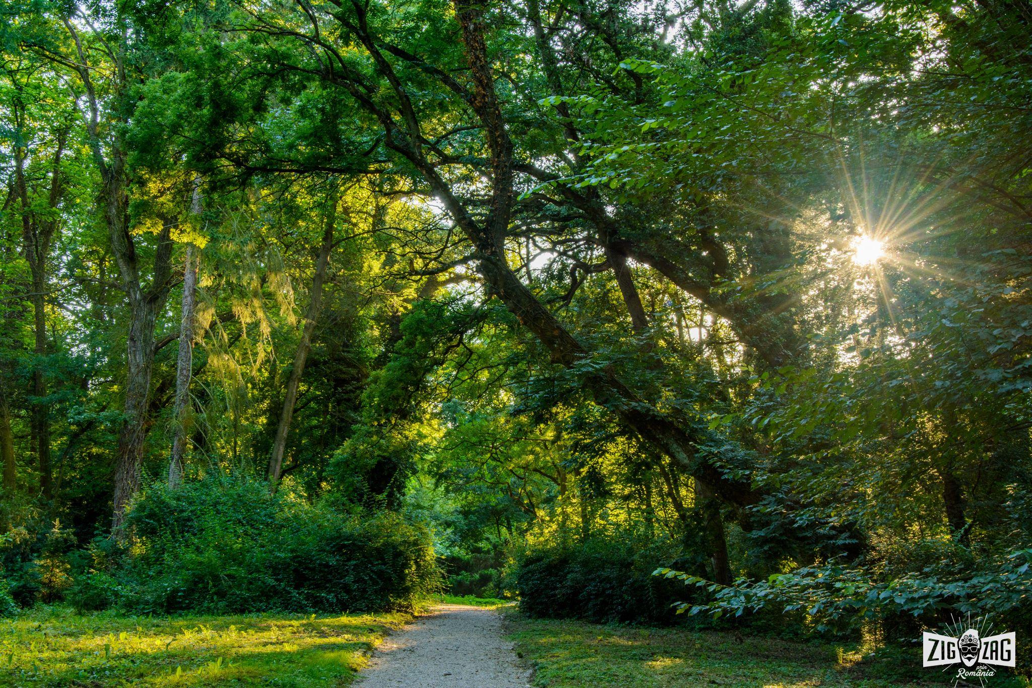 parcul dendrologic arborethum simeria