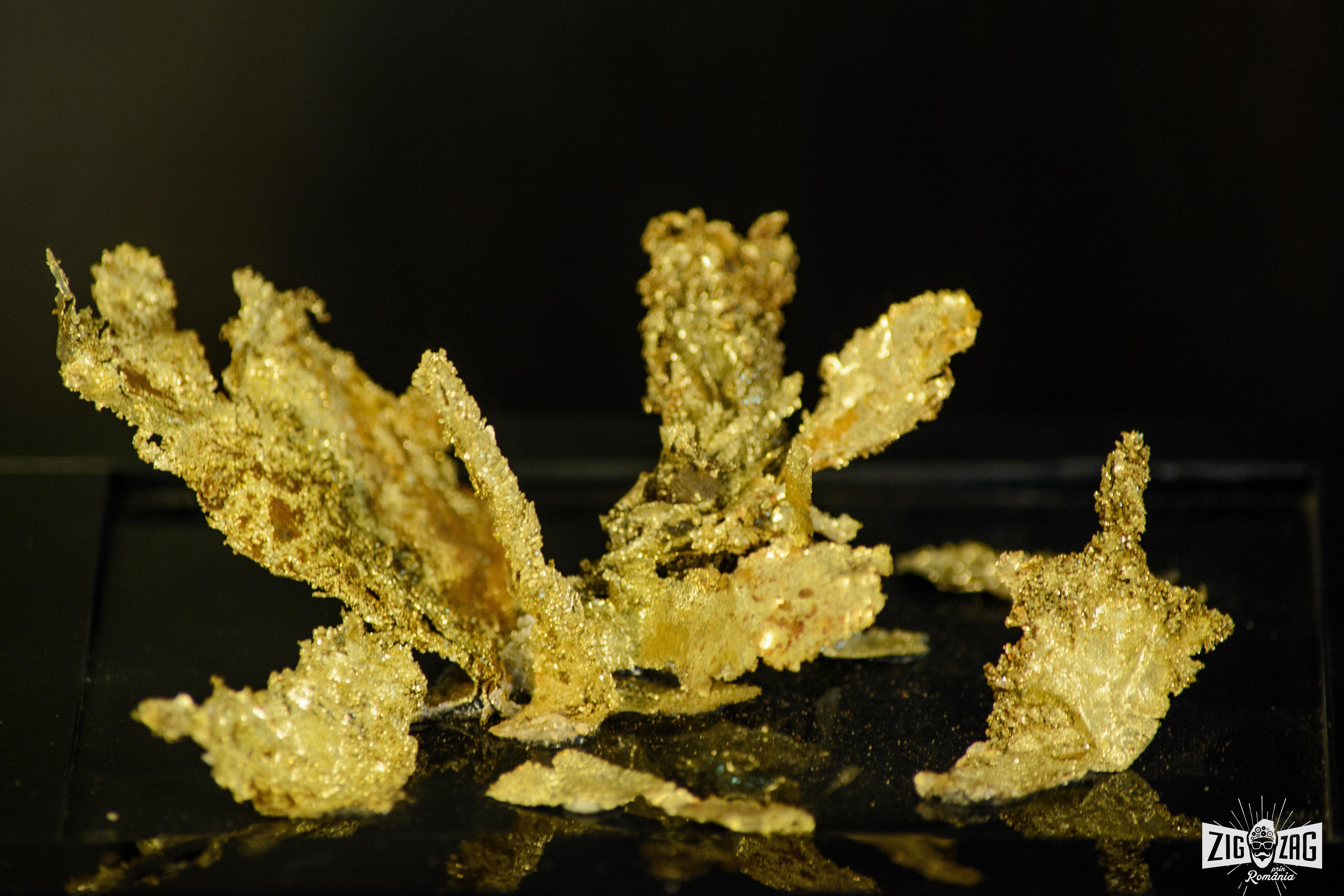muzeul-aurului-brad
