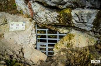 Cum să rămâi în istorie chiar și peste zeci de mii de ani? O vizită la Peștera Coliboaia