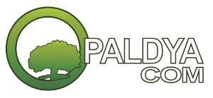 Paldya-Autocheck-Service