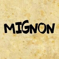 Restaurant Mignon Craiova